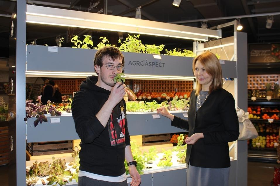 Будущее наступило: продукты будут выращивать прямо в магазине. Первый опыт в Екатеринбурге 10