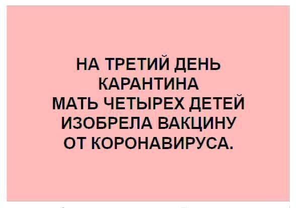 «Атлант затарил гречи». Лучшие мемы про коронавирус и карантин 1