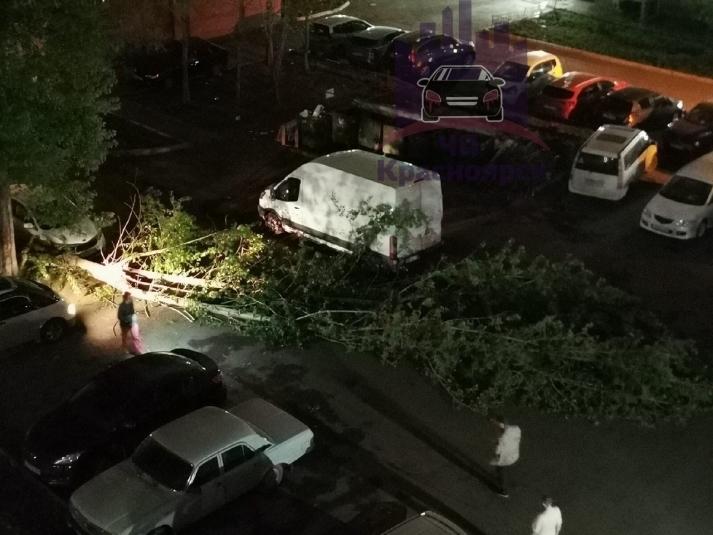 Красноярск устраняет последствия урагана   1