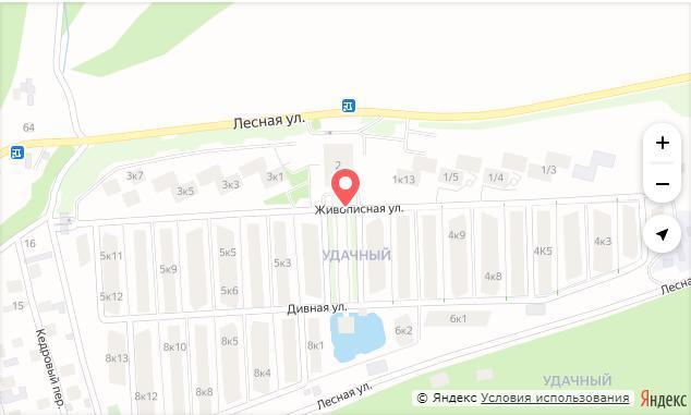 Красноярский экс-депутат Артем Бадюков готов взять таунхауз в аренду у самого себя 1