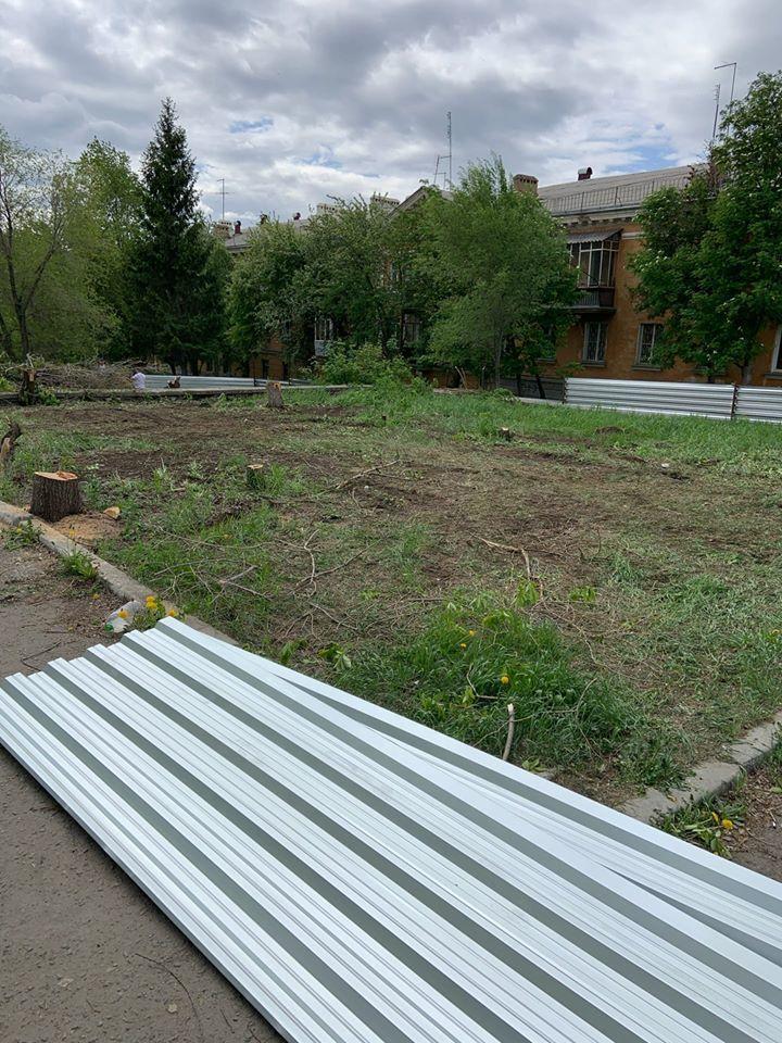 В Челябинске власти разрешили уничтожить здоровые деревья под строительство аптеки 1