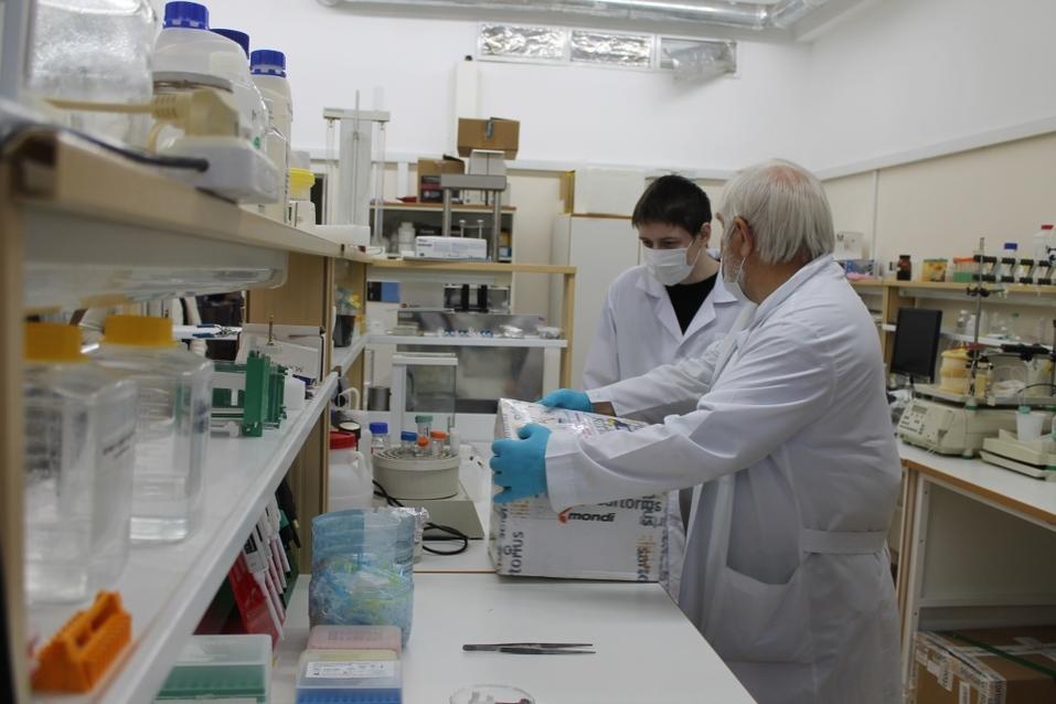 Решения новосибирских ученых помогут в борьбе с онкологией. Нужно финансирование 10