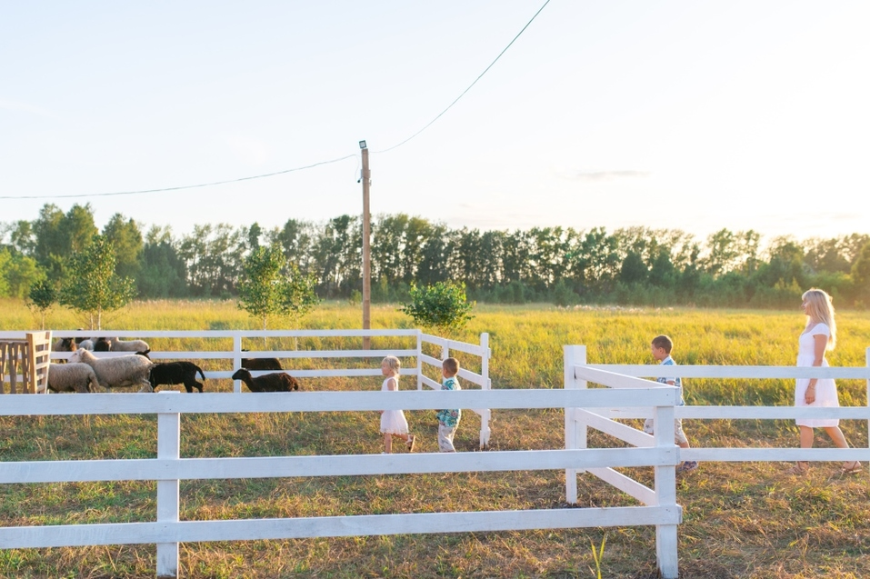Жить как в сказке. Где выбирают загородные участки прогрессивные новосибирцы?  3