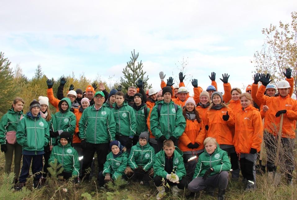 Озеленение северных территорий вместе с детьми