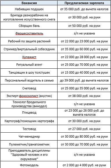 Гранатомётчик и набивщик подушек: в Челябинской области нашли необычные вакансии 1