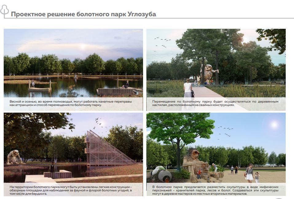 Проектные решения парка углозуба