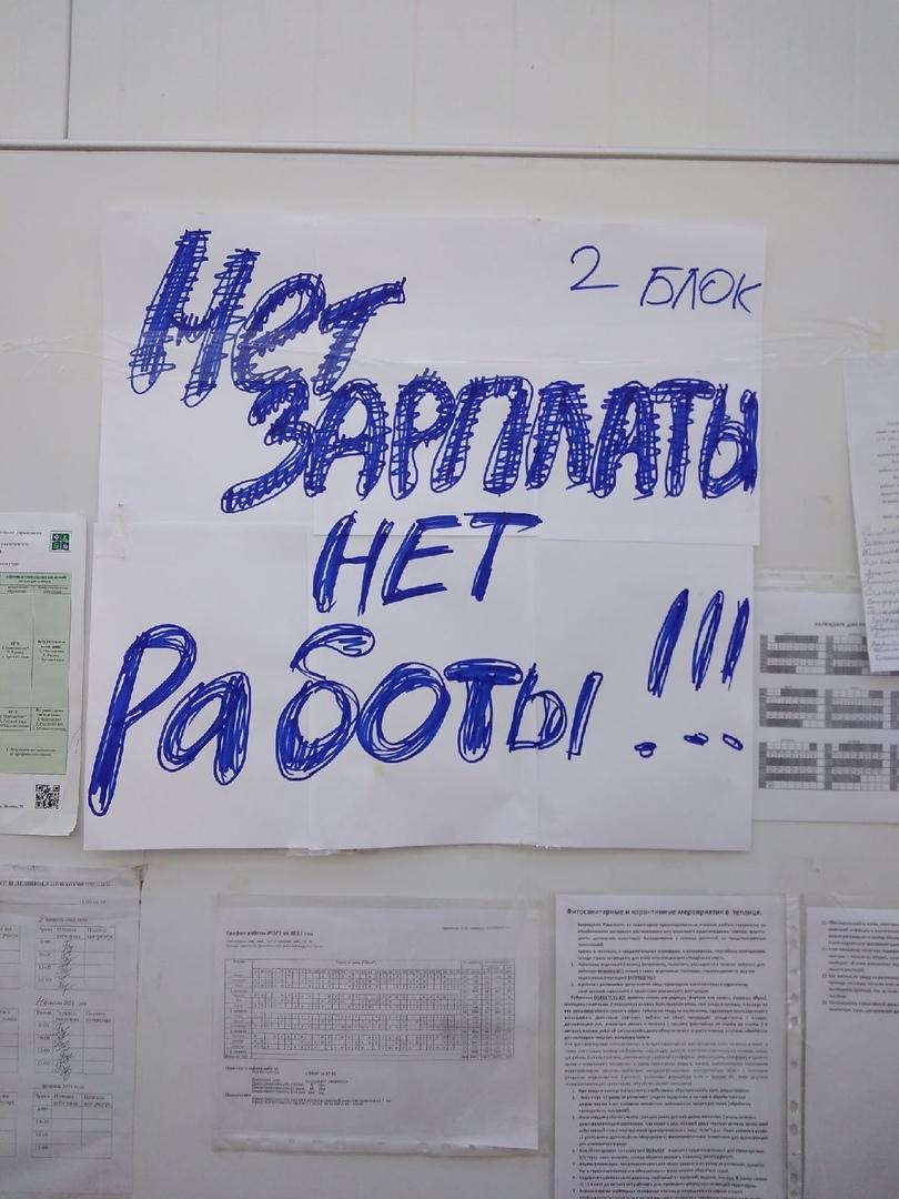 Работники агрокомплекса «Чурилово» устроили забастовку из-за задержки зарплат 1