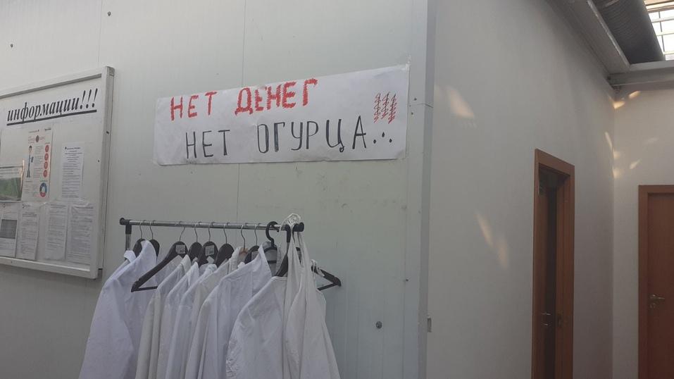 Работники агрокомплекса «Чурилово» устроили забастовку из-за задержки зарплат 2