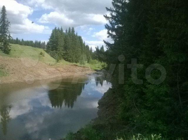 Шале в горах, водочный завод, полигон ТБО: топ объявлений о продаже бизнеса на Южном Урале 7