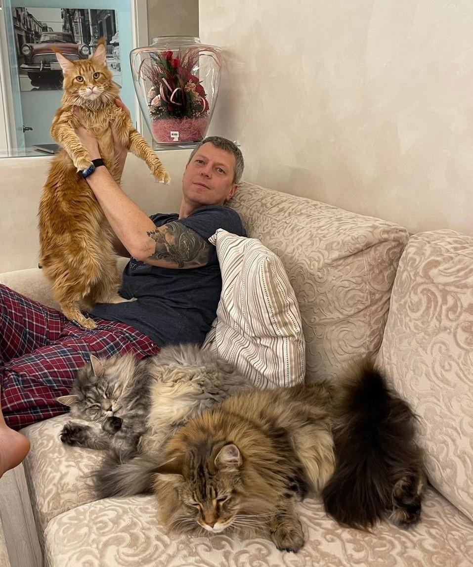 «Терпят нас за вкусняшки»: котики, которые стоят за екатеринбургскими бизнесменами 2