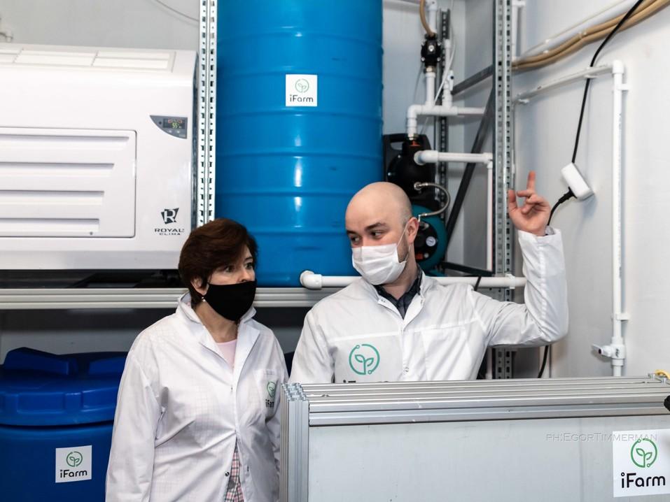 Новосибирский разработчик iFarm вырастил в мульти-лаборатории европейские сорта клубники  12