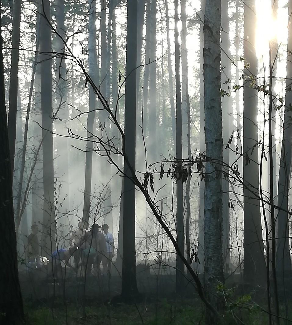 Пожар на Старомосковском тракте