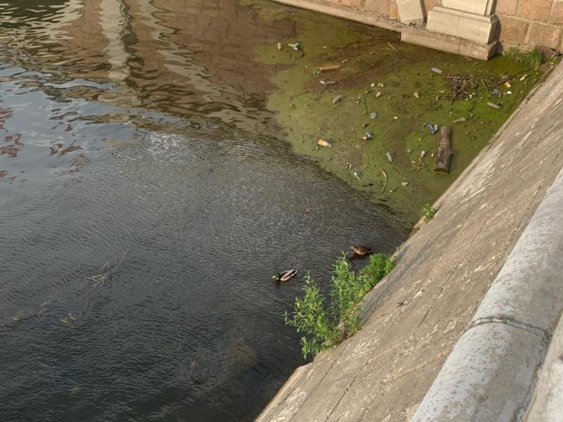 «Ни один крупный город не может так позориться»: в Челябинске игнорируют уборку территорий 1