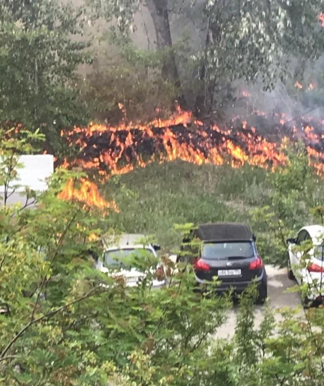 Пожар на Уктусе. Фото: Е1