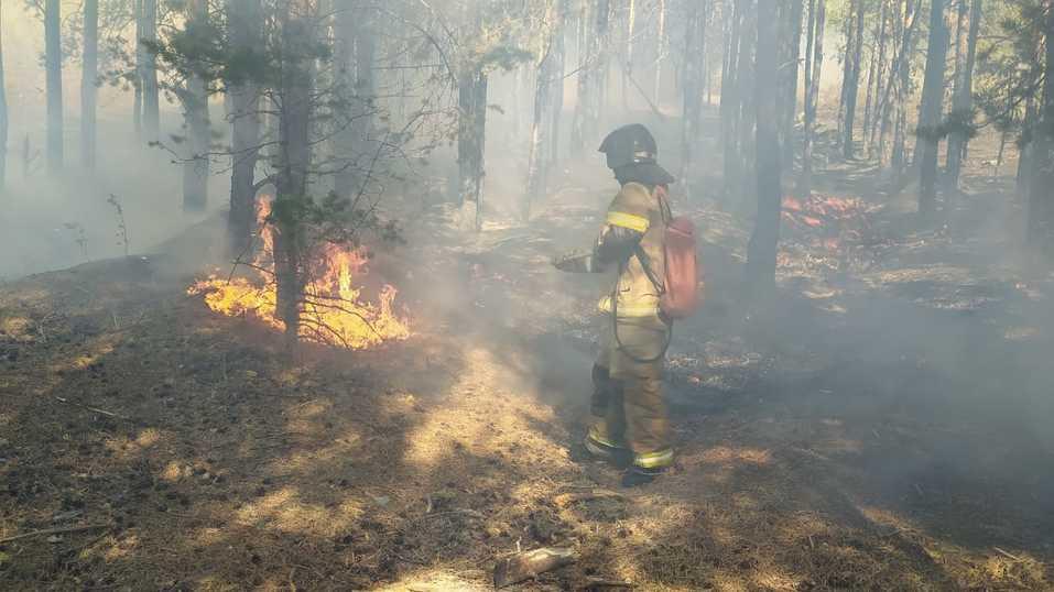 Пожар в Сысерти