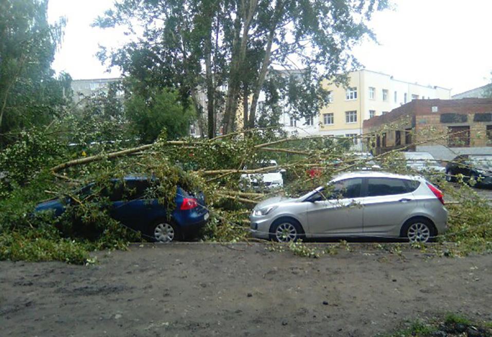 Шторм в Екатеринбурге повалил деревья. Пострадали автомобили 1
