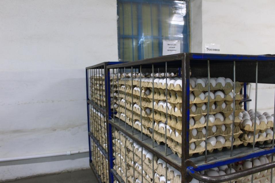 Склад яйца