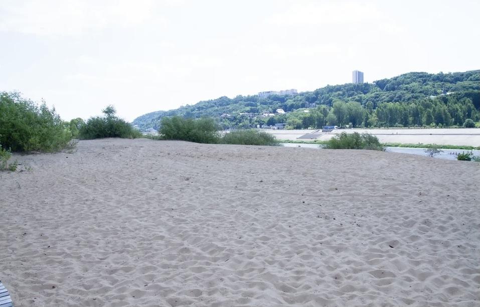 «Ежегодно в Волгу попадает 10 тонн микропластика, и все это идет в Нижний Новгород» 13