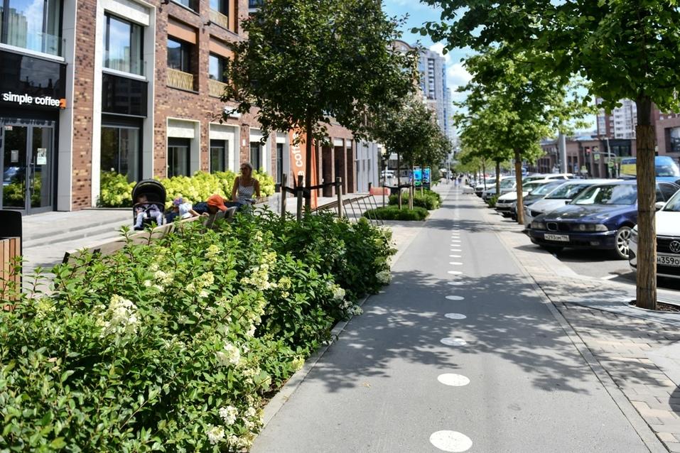 Велодорожки отделены от пешеходной части с помощью растений