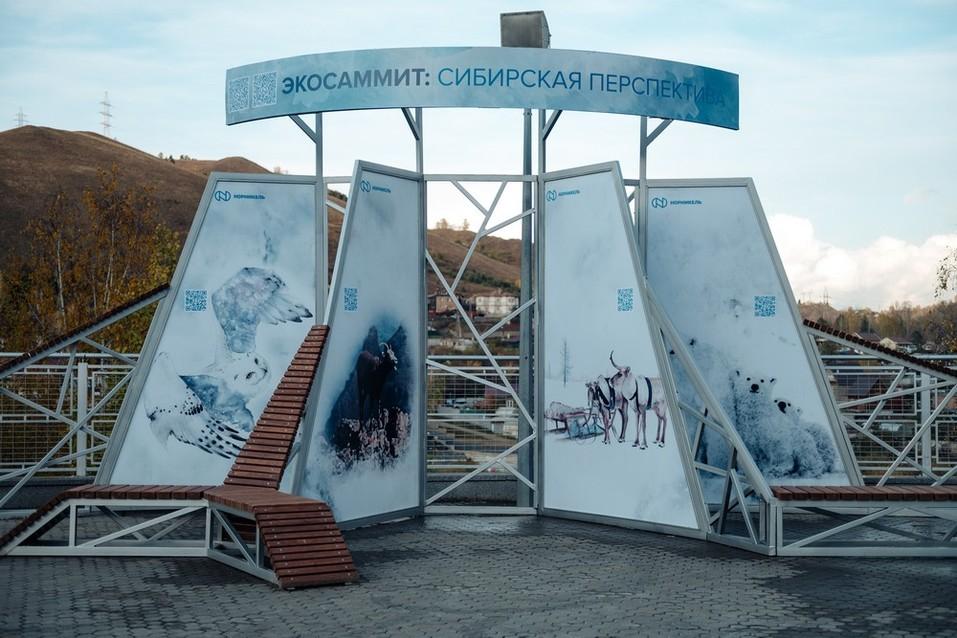 Быть экологичным выгодно: что обсуждали эксперты Международного экосаммита в Красноярске 1