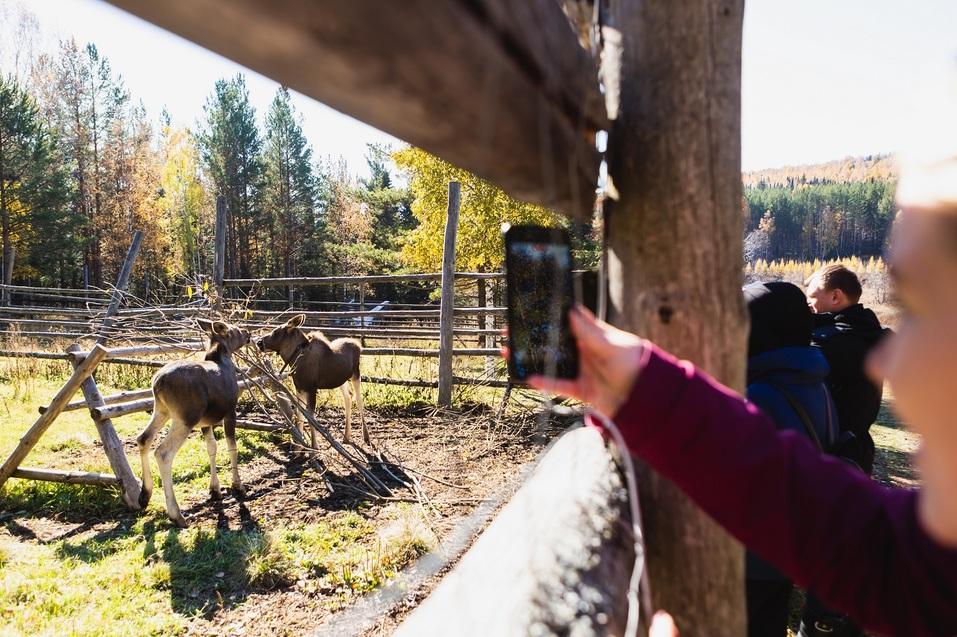 Туристы смогут отправиться в виртуальный тур по национальному парку «Зюраткуль»  2