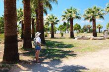 Летом 2014 г. уральский туристический рынок показал рост
