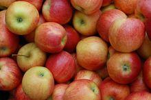 Челябинское предприятие заменит польские яблоки и американскую сою собственной продукцией