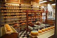 Уральские молочники расширяют линейку сыров
