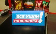 В Челябинской области 20% избирателей не знают о предстоящих выборах