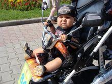 Дайджест событий: зарубежные компании Harley-Davidson и Honka обосновались в Новосибирске