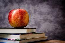 Семь школ Челябинской области попали в топ-500 лучших в России