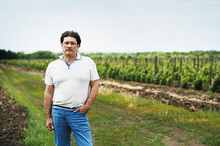 Валерий Тройчук, УК «Донвинпром»: вдохнуть новую жизнь в донские виноградники
