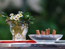 «Опора России» не смогла опротестовать запрет курения в летних кафе