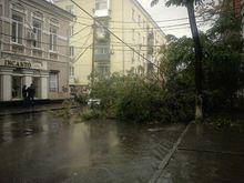 Донской Росреестр сократил регистрацию для граждан, пострадавших от урагана