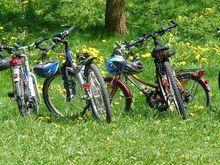 Велосипеды и их поклонники: готовы ли нижегородский бизнес сменить четыре колеса на два