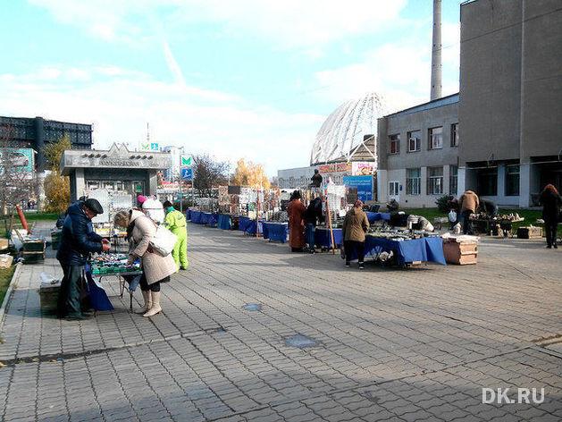 Муниципальные сборы с малого бизнеса минуют Екатеринбург