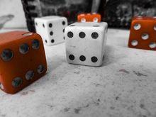 Преобразовать враждебное в полезное: как новосибирские бизнесмены «ловят» фортуну
