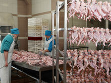 Ряд свердловских пищевых компаний оградят от приватизации