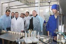 В Ростовской области начали производство плавленых сыров