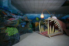 В Казани построили океанариум за 280 млн рублей