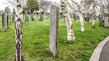 Новое кладбище появится на территории Мясниковского района Ростовской области