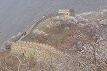 Челябинские предприятия пригласили «зайти» в Китай