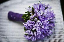 Красноярск возглавил рейтинг самых «цветочных» городов-миллионников