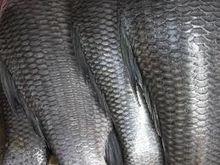 В Челябинске увеличился спрос на местную рыбу