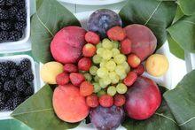 Свердловские бизнесмены договорились о поставках фруктов из Крыма