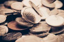 Краевые власти не намерены выдавать субсидии офшорным компаниям