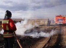 Красноярский бизнес решил помочь пострадавшим в пожарах в Хакасии