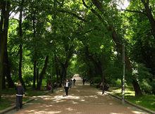 Парк в Александровке обустроят к майским праздникам