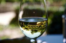 Ростовский винодел раскритиковал закон, который должен был облегчить жизнь КФХ