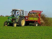 Представители сельхозотрасли рассказали, что думают о новом министре сельского хозяйства